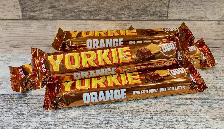 Limited Edition Yorkie Orange